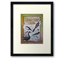 River Day Birds  Framed Print
