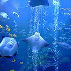 Underwater Odyssey by DarthIndy