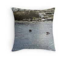 Ducks in Mud Throw Pillow