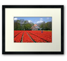 The Tulip Farmer Framed Print