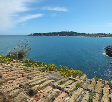 Cap d'Antibes from the Old Town Antibes by John Evans