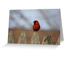 Glamorous Red Greeting Card