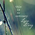 No Ordinary Love Story by micklyn