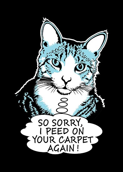 Cat Peed Carpet by JohnnyMacK