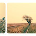 Colour Landscape Triptych by Nicola  Pearson
