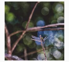 Dragonfly resting on a twig One Piece - Long Sleeve