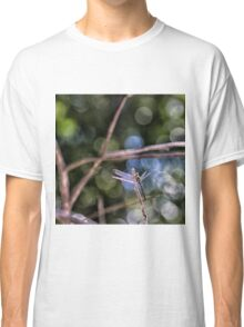 Dragonfly resting on a twig Classic T-Shirt