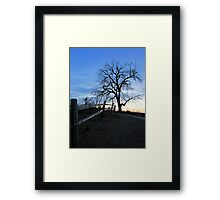 Rustic Trail Framed Print