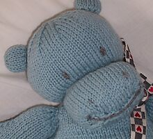 Knitted Hippo by Dionne Meade