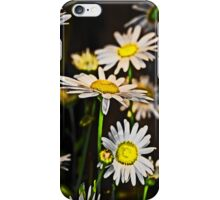 Sunshine Daisy iPhone & iPod Cases iPhone Case/Skin