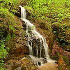 small falls by side of the road by jaymeb21