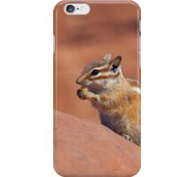 Cute Chipmonk for your i-phone! iPhone Case/Skin