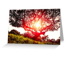 Tree Fire Greeting Card