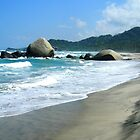 Tayrona Beach by Alessandro Pinto