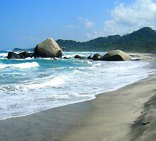Tayrona Beach by Alessandro Pinto