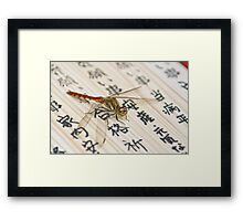 Dragonfly on Japanese Parchment Framed Print