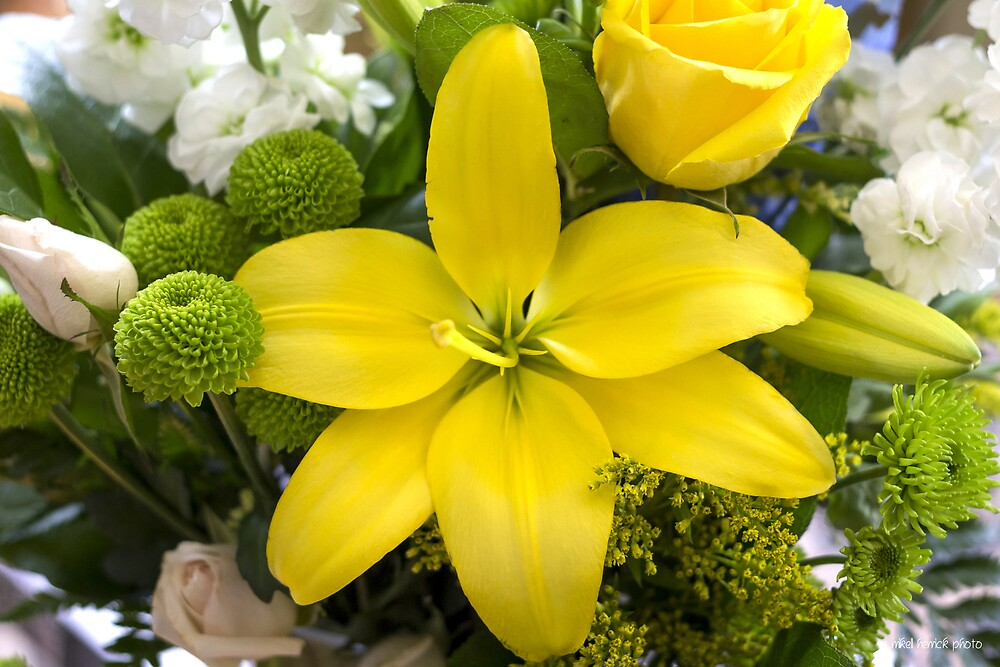 Yellow Lily Center of Attention by Mikell Herrick