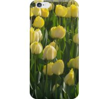 The Tulip Garden iPhone Case/Skin