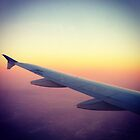 Airplane Wing Coming Into San Diego, California, USA by Nadine Staaf