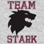 Team Stark T-Shirt by Stephanie Ohnesorge