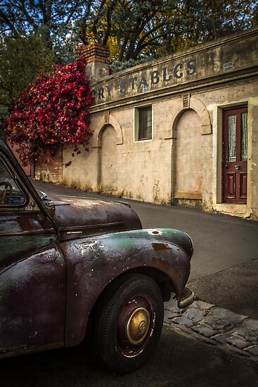 Aged Beauty, Daylesford, Victoria by Julie Begg