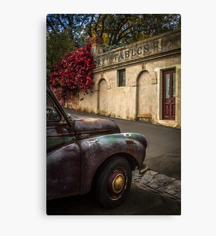 Aged Beauty, Daylesford, Victoria Canvas Print