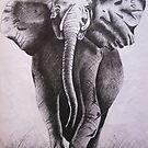 Elephant by AnkitaPopli