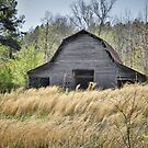 Noblit-Lytle Barn, Minor, Tennessee by budrfli