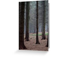 Wood sprites dancing in the trees Greeting Card