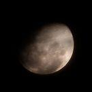 Lunar Love by Beau Williams