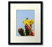 Buzzing In For A Landing! Framed Print