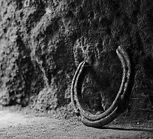 Horseshoe by Brian Avery