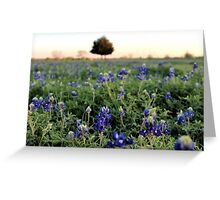 A Field Full of Texas! Greeting Card