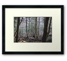 Mountain Morn Mist on the Appalachian Trail Framed Print