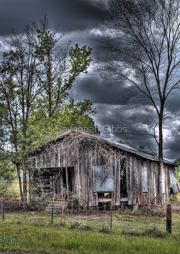 Old Shack  by Savannah Gibbs