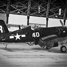 P-51 by Robert  Miner