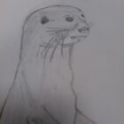 Otter Sketch by ellismorleyphto