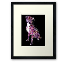 Pit Bulls May Lick You To Death Framed Print