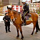 Two of New York's FInest by Shulie1