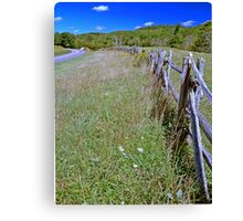 Pastures edge Canvas Print