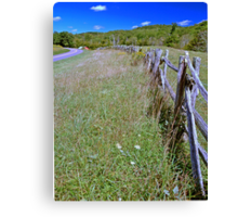 Pastures edge Canvas Print