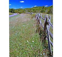Pastures edge Photographic Print