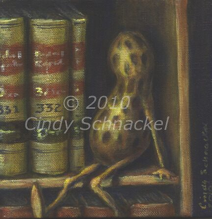 Peanut in Bookcase by © Cindy Schnackel