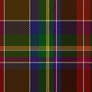 02292 Susanna Elginton Nameless Tartan Fabric Print Iphone Case by Detnecs2013