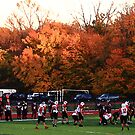 Autumn Football with &quot;Dry Brush&quot; Effect by Frank Romeo