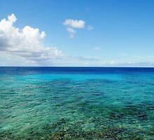 Ocean View by emilyduwan