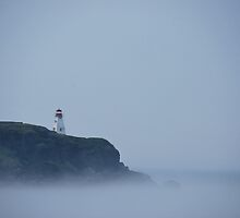 Digby Neck Lighthouse by pictureit