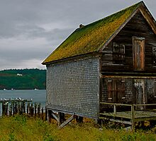 The Old Fish Hut by pictureit