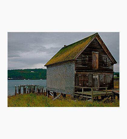 The Old Fish Hut Photographic Print