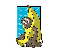 Banana Sloth Photographic Print